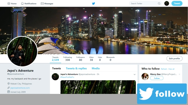 Twitter_Follow_PAge
